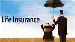 Asuransi jiwa Pasar
